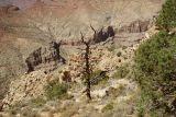 Eastern Canyon