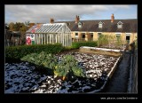 Pit Cottage Garden #5, Beamish Living Museum