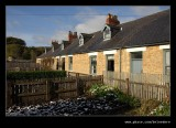 Pit Cottage Garden #6, Beamish Living Museum