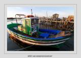 Boats 69 (Carrasqueira)