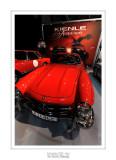 Retromobile 2013 Paris - 20