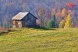 Hilltop Log Shed 30335