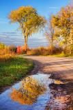 Autumn Reflection 20121101