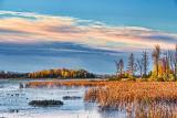 Autumn Swale At Sunrise 28987
