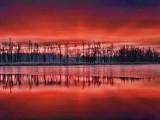 Irish Creek Sunrise 20121120