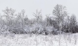 Snowscape 32283-4