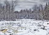 Winter Marsh 32423-4