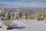 Snowscape 32497