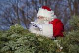 Santa On Parade 31336