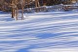 Snow Shadows 20121231