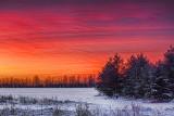 Winter Sunrise 32513