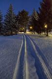 Snowmobile Tracks At Dawn 20130111