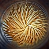 Toothpicks 20130123