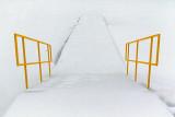 Snowy Dock 20130129