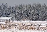 Snowscape 33234
