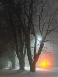 Foggy Winter Night 20130130