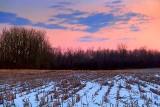 Winter Field At Sunrise 33376