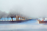 Canal Under Fog 33604