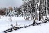 Snowscape 33930