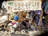Guérisseur traditionnel sur le marché de Toumousseni, Burkina Faso