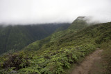 Hiking into the clouds