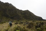 Zig Zaggy trail