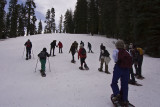 Snow Shoeing at Badger Pass Ski park