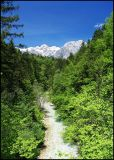 Kamniška Bistrica Valley, Slovenia