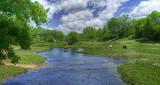 Stream in Walworth County