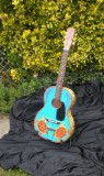 guitar turtle fin.jpg