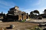 Foro Romano, Rome, Italy D300_19989 copy.jpg