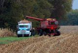 Indiana Fall Harvest