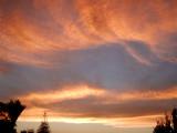 sky of NZ