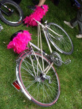 WNBR naked bike ride031.jpg