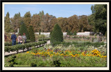 The Vegetable and Flower Garden
