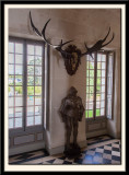 Armour and Antlers