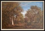 Paysage, Foret de Fontainebleau
