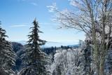 Newfound Gap Snow 2