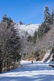 Clingmans Dome Rd Snow 5