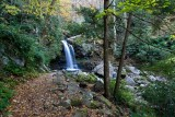Grotto Falls 1