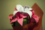 251-365 130214 F2 Valentines 002_1 sm.jpg