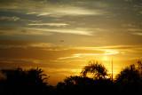 311-365 130415 F2 Sunrise 001 sm.jpg