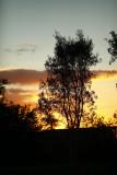 325-365 130429 F2 Sunset 018 sm.jpg