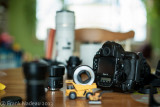 DSC07123 - A900 with 58mm 1.2 at F2.0.jpg