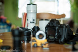 DSC07127 - A900 with 58mm 1.2 at F2.0.jpg