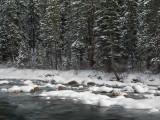 20121022_Mosquito Creek_0092.jpg