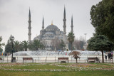 20130129_Istanbul_0025.jpg