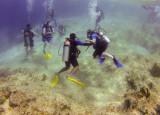 20130315_Cozumel Island_0385.jpg