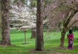 20130406_Vandusen Garden_0024.jpg