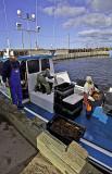 Bouctouche, N.B., lobstermen